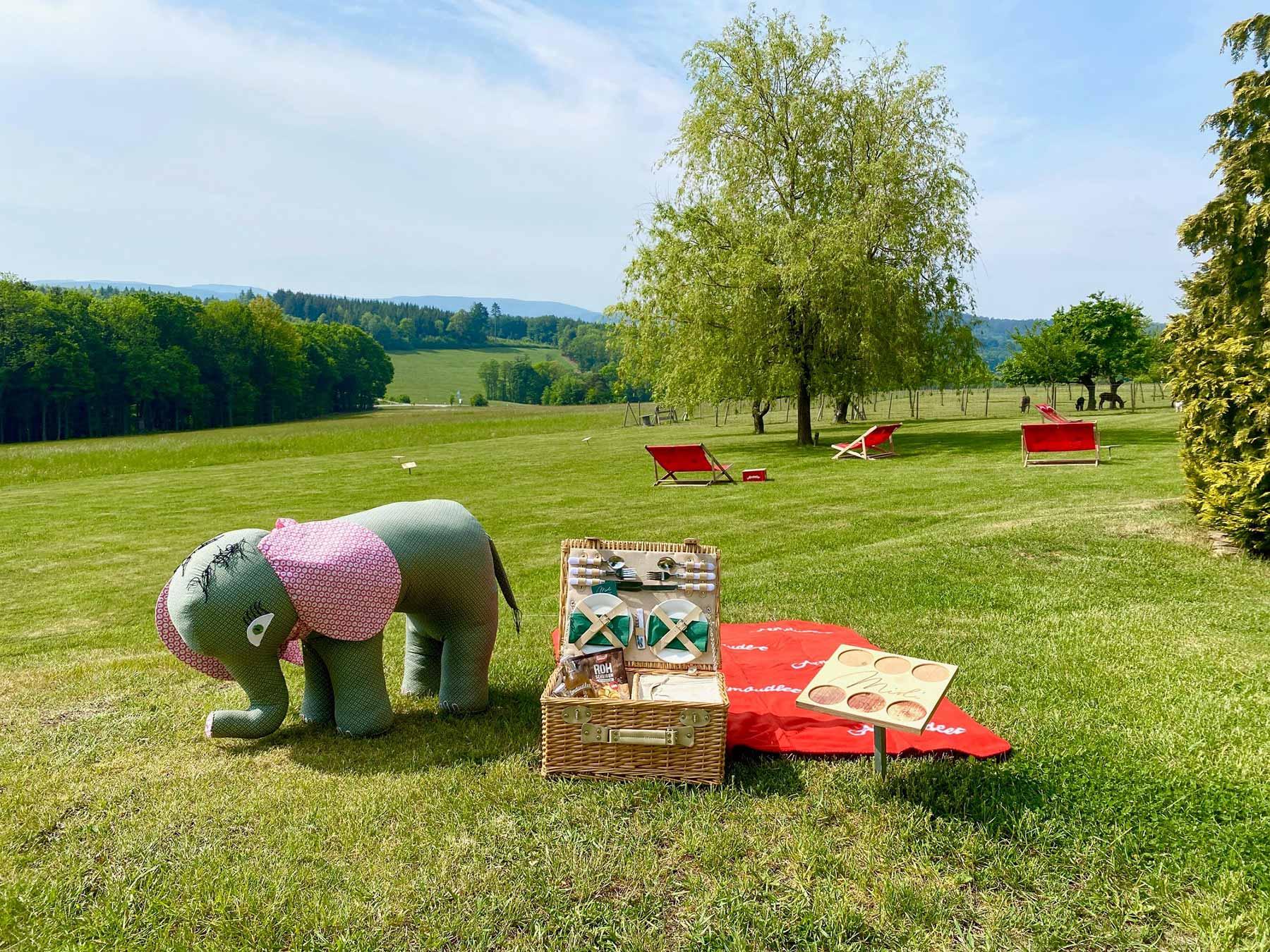 Picknick mit Babyelefant zur Abstandsmessung